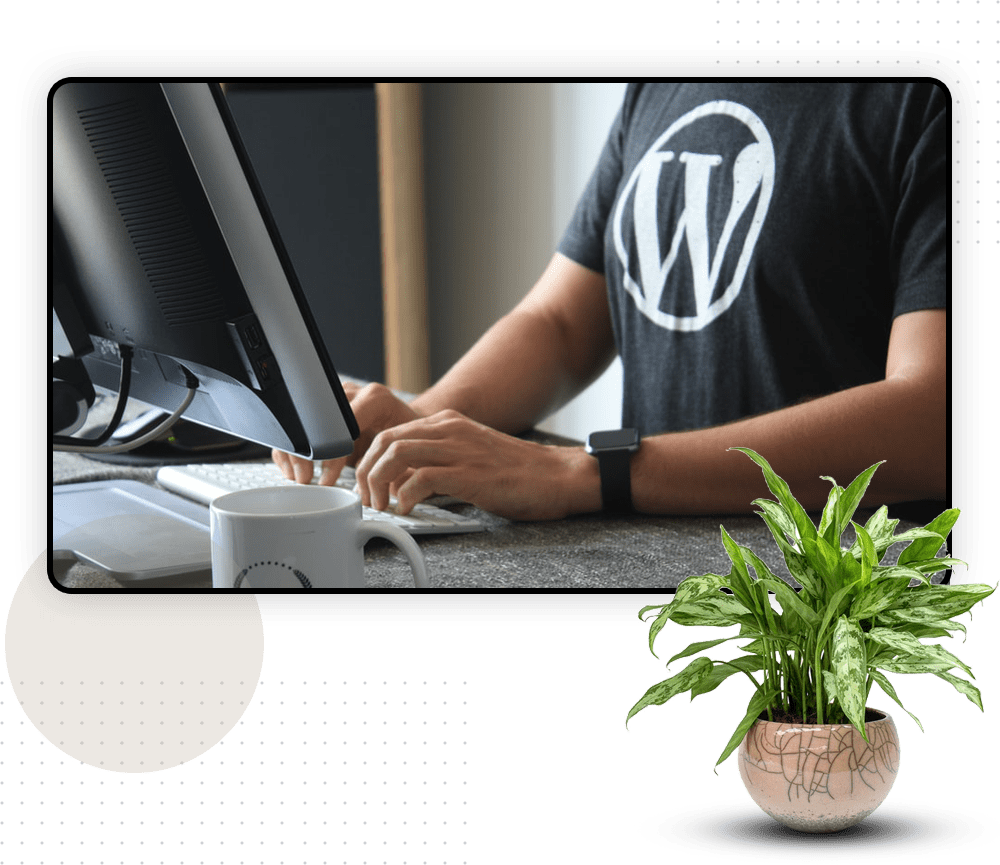 WordPress Plugin Development Company in Singapore