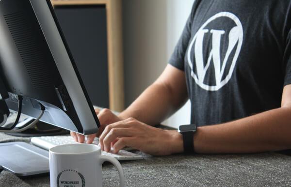 Tips for Hiring a WordPress Plugin Development Agency in Singapore